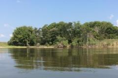 Snake Island (Credit, Donna Abbott)